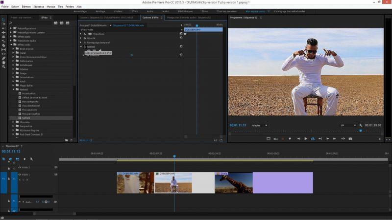 Les effets dans Premiere Pro CC